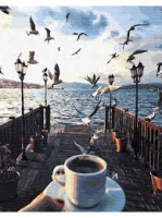 Картина по номерам GX 23269  Утро с чайками 40*50