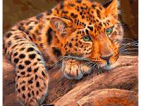 Картина по номерам GX 29463 Задумчивый леопард 40*50
