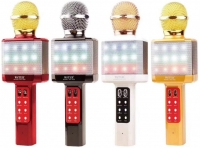 Микрофон караоке WSTER WS-1828